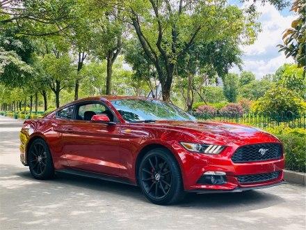 Mustang 2015款 2.3T 性能版