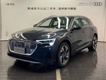 浙江二手奥迪e-tron(进口) 2019款 55 quattro 技术型